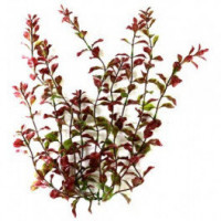 Растение Tetra DecoArt Plantastics Red Ludwigia, 38 см